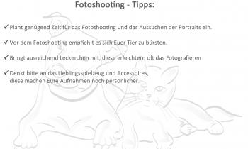 Tipps Tierfotoshooting